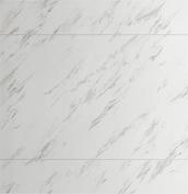 Panasonic Lクラスバスルーム ベースプラン グラリオカウンタータイプ 壁パネル アジャックス柄